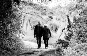 Consulte aquí el informe sobre el estado de la población adulta mayor en Sabana Centro.